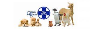 Garden-Route-SPCA