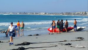 Law Enforcement officer Dayle Willars plunged into the sea on his jet ski.