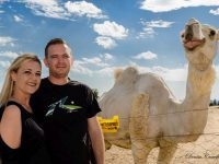 This camel simply wanted to be included in the shoot. Photos: Denise Crawford